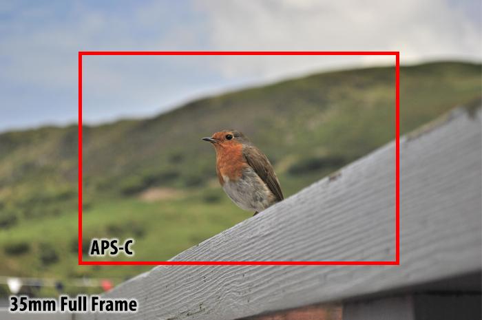 APS-C vs full frame