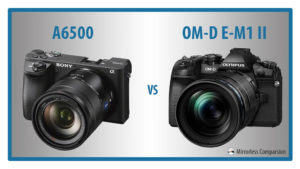 The 10 Main Differences Between the Sony a6500 and Olympus OM-D E-M1 II