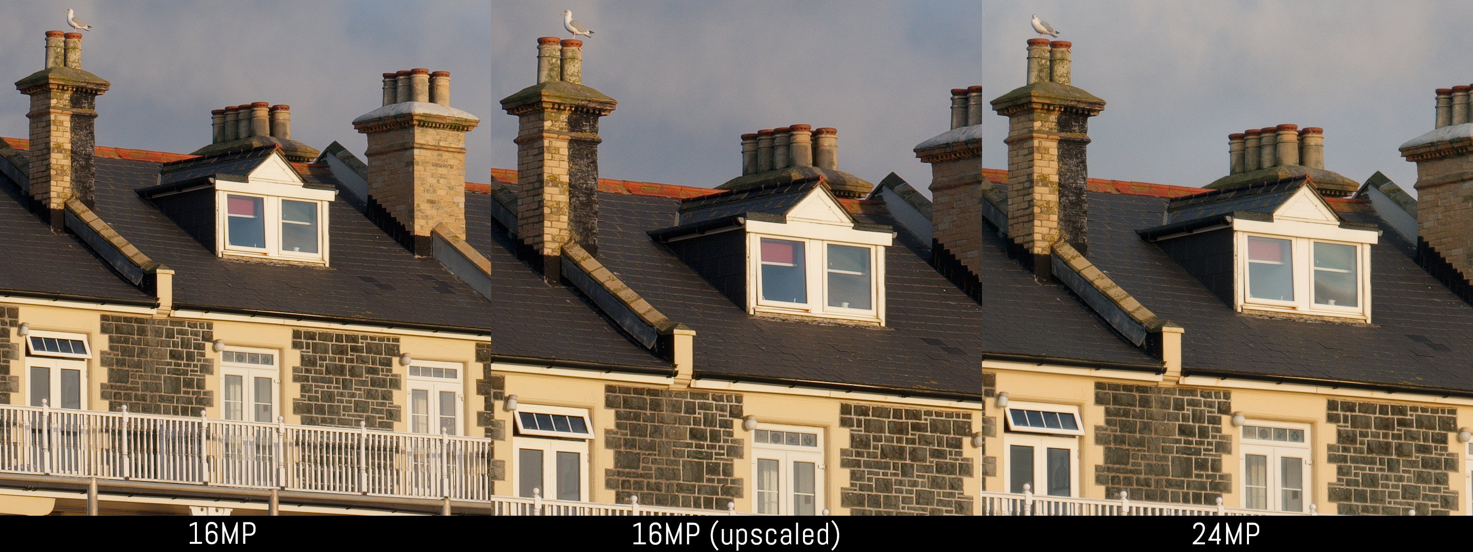 Fujifilm X T1 Vs T20 Five Key Aspects Analysed Baterai Fuji Np W126 For A3 E1 Pro 1 T2 With Packing Reference Image 100 Crop