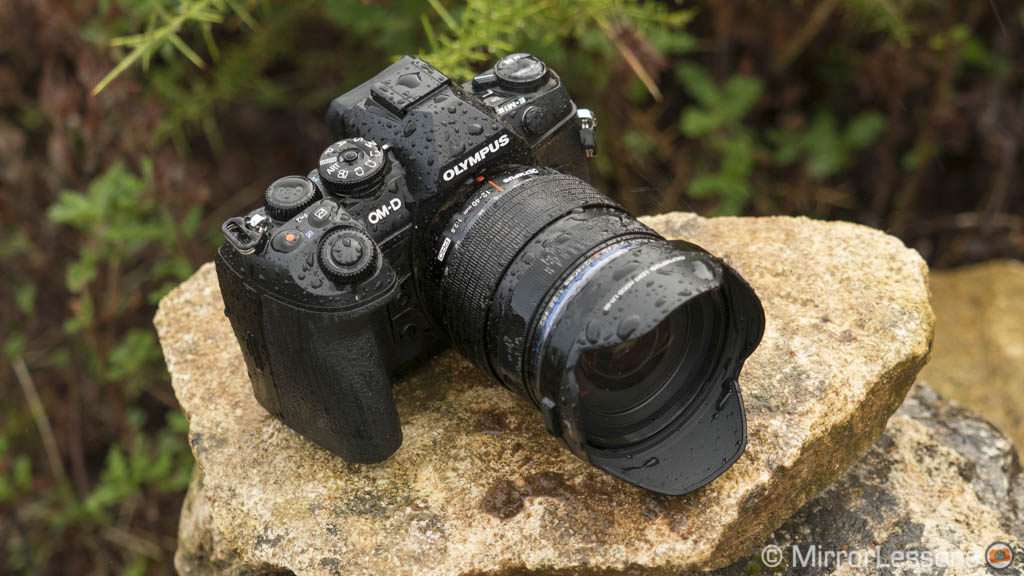 best mirrorless camera wildlife