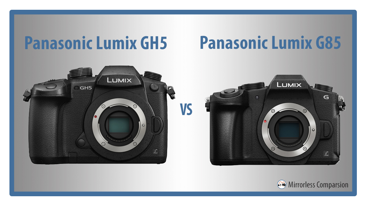 The 10 Main Differences Between Panasonic Gh5 And G85 Vs G80 3 Way Switch