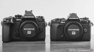 Olympus OM-D E-M1 vs. OM-D E-M5 Mark II – The complete comparison