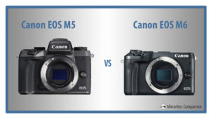 The 5 Main Differences Between the Canon EOS M5 and M6