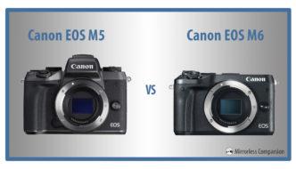 canon eos m5 vs m6 featured