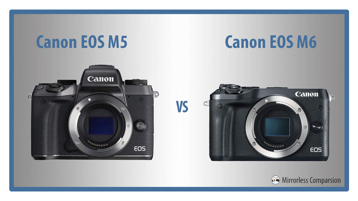 canon eos m5 vs m6 featured