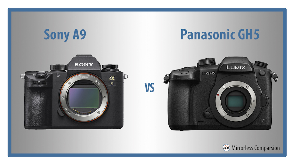 sony a9 vs panasonic gh5