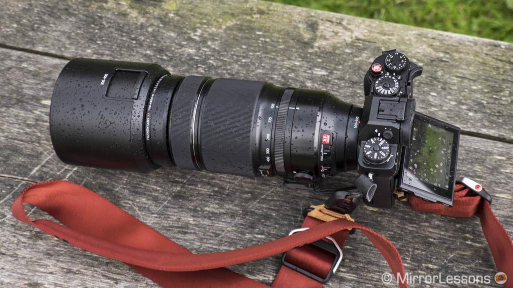 best mirrorless camera wildlife