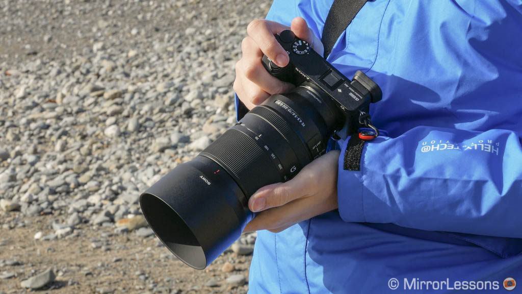 best mirrorless camera for wildlife and birds photography