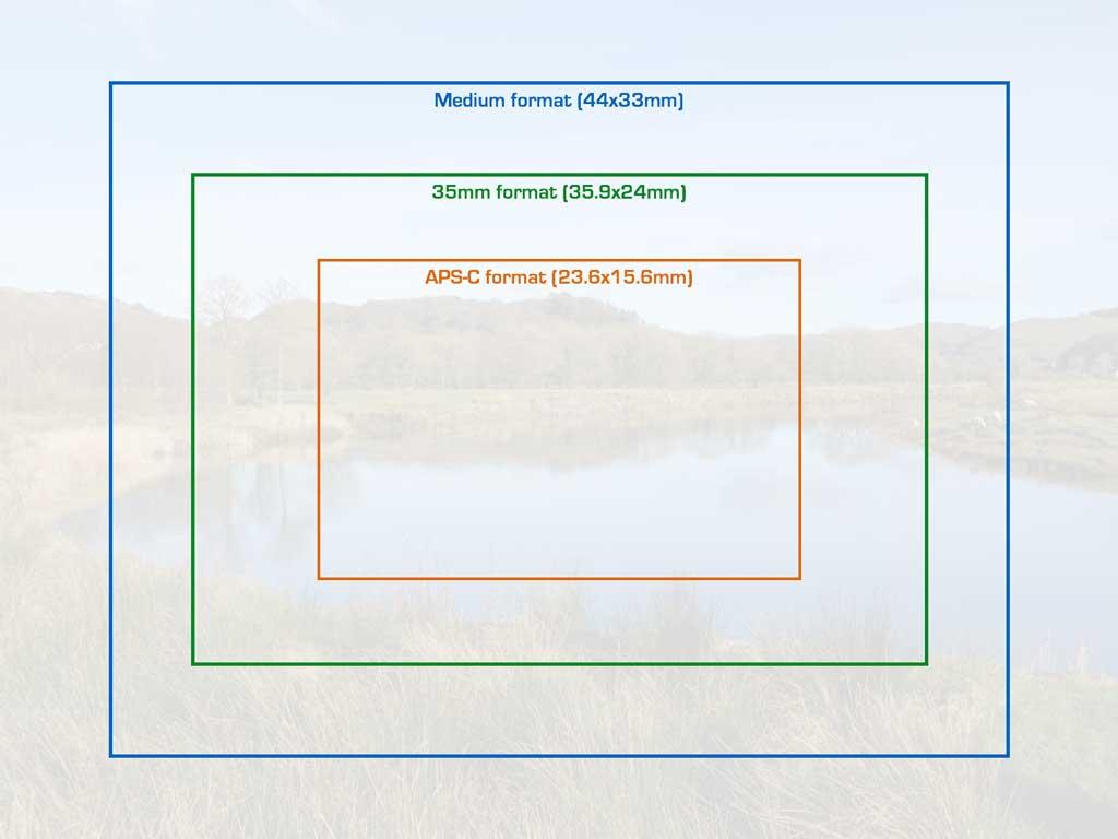 Sony A7r III vs Fujifilm GFX 50s – Image Quality Comparison