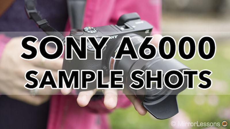 Sony a6000 sample shots