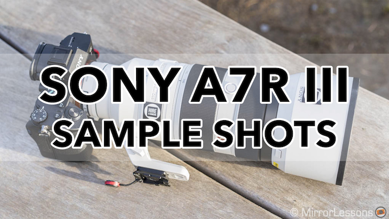 sony a7riii sample images