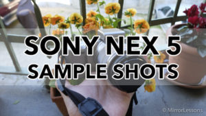Gallery of Sony NEX 5 Sample Images