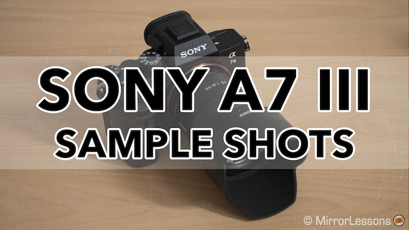 Gallery of Sony A7 III Sample Images (RAW & SOOC JPGs)