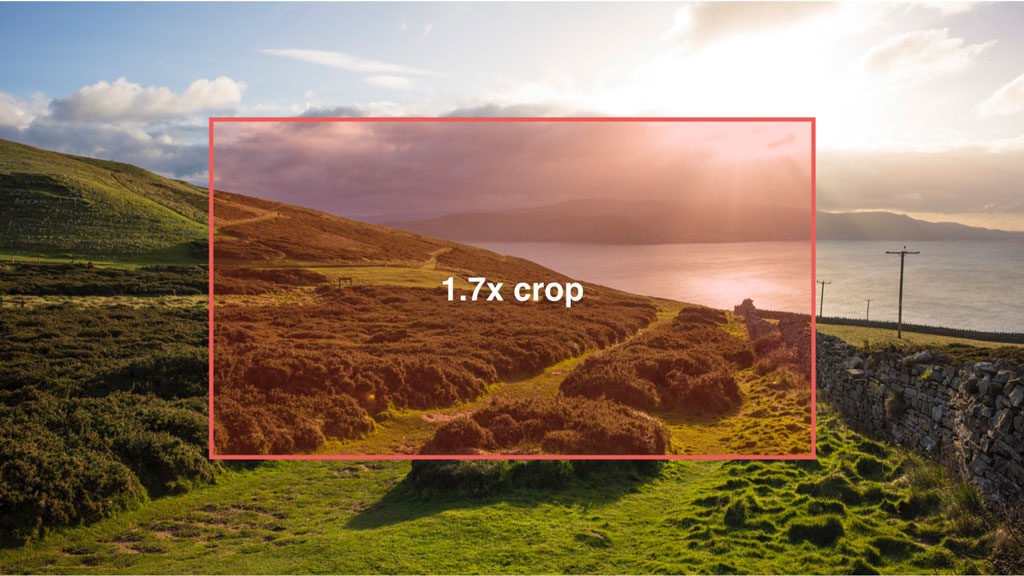 4K crop on EOS R