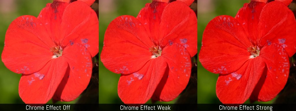 Visual comparison between Chrome Effect Off, Chrome Effect Weak and Chrome Effect Strong using a red flower.