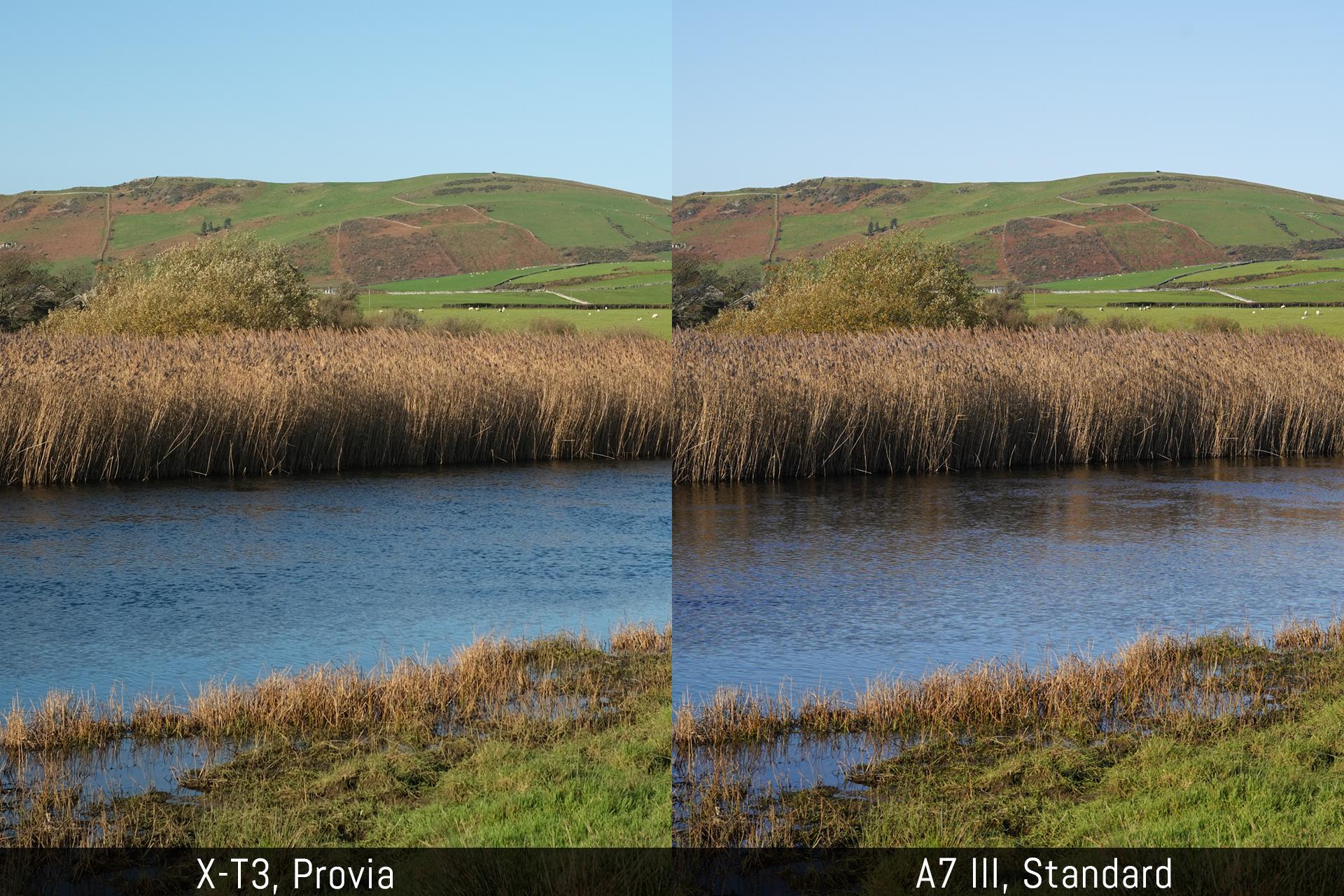 Fujifilm X-T3 vs Sony A7 III – Five key points analysed