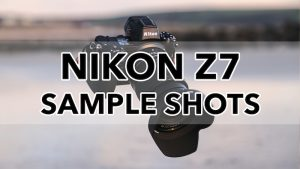 nikon z7 sample images
