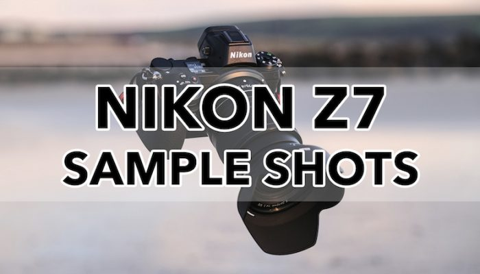 Gallery of Nikon Z7 Sample Images (RAW & SOOC JPGs)