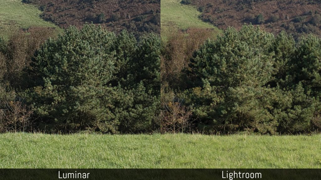 luminar dam vs lightroom
