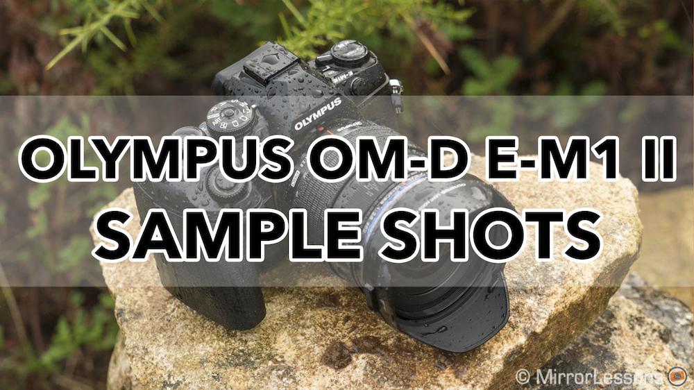 olympus omd em1 mark ii sample images