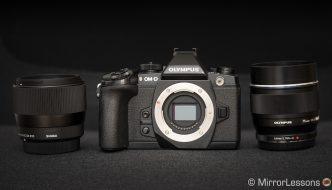 sigma 56mm vs olympus 75mm product shots-4 copy