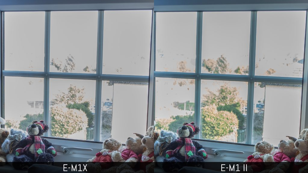 Two images comparing the highlight recovery of the E-M1X and E-M1 II