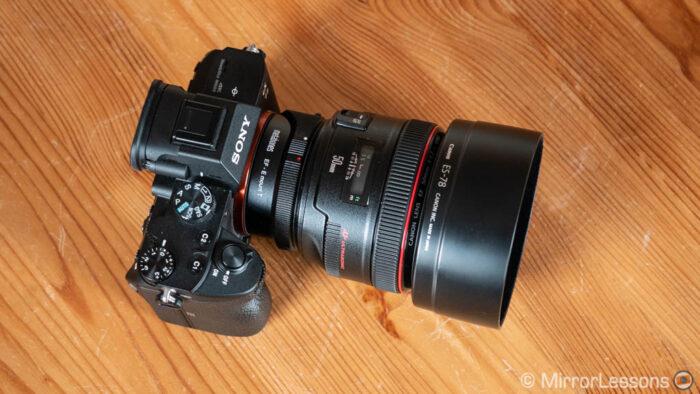 sony a7 iii autofocus canon lens