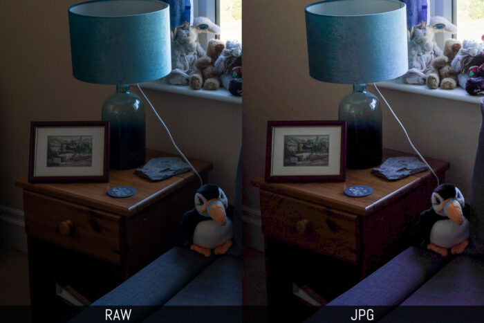 sony a7 iii raw vs jpg