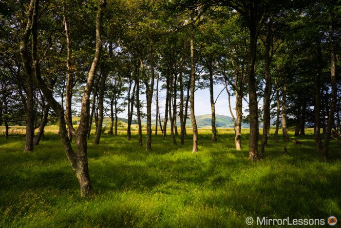 sony a7r landscape image sample