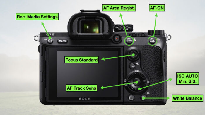 sony a7 iii settings for sports