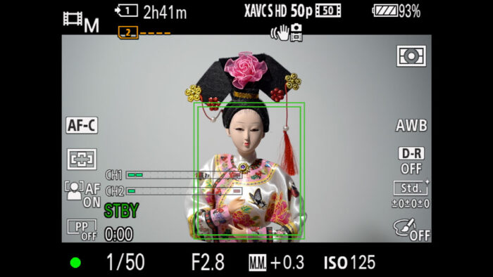 The camera tracking a doll with a green rectangle around her body