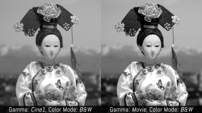Gamma: Cine1, Color Mode: Black and White versus Gamma: Movie, Color Mode: Black and White