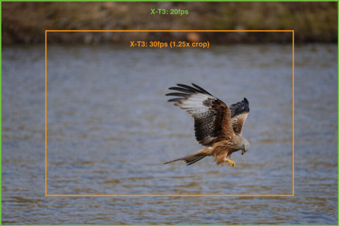 The 1.25x sensor crop demonstrated with an image of a kite flying over water