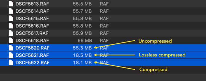 file size comparison between the three RAW compression settings