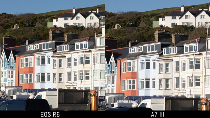 centre crop of the reference image showing the difference in magnification between 20MP and 24MP when viewed at 100%