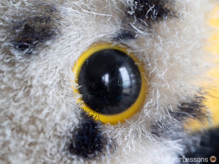 close-up of the eye of the stuffed toy