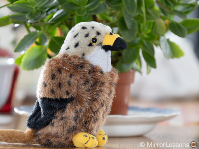 red kite stuffed toy in front of a green plant
