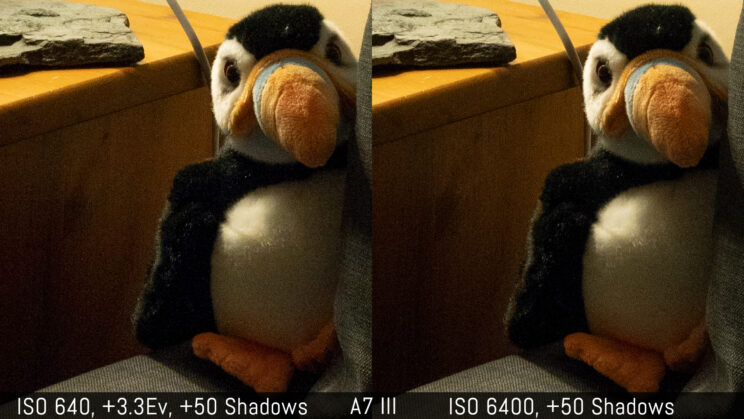 side by side crop showing the quality of the A7 III at ISO 6400 and ISO 640 with +3.3 stops exposure recovery in post