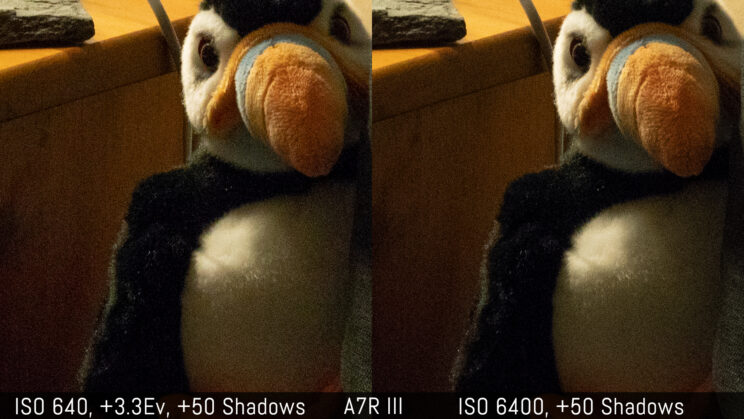 side by side crop showing the quality of the A7R III at ISO 6400 and ISO 640 with +3.3 stops exposure recovery in post