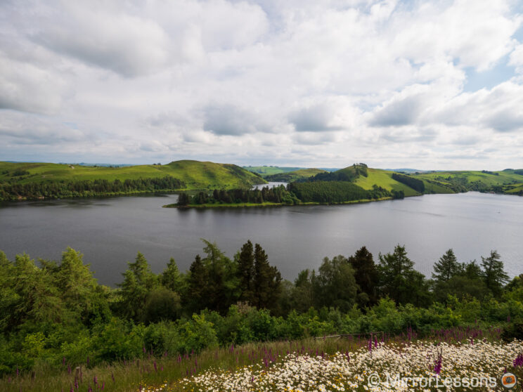 landscape scene shot at 8mm, showing trees and flowers in the foreground, a lake in the middle and hills on the background, with a big portion of the cloudy sky on top