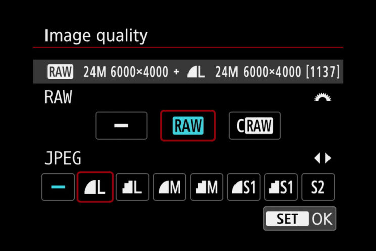 screenshot from the Canon M50 menu showing the image quality setting (RAW and JPG)
