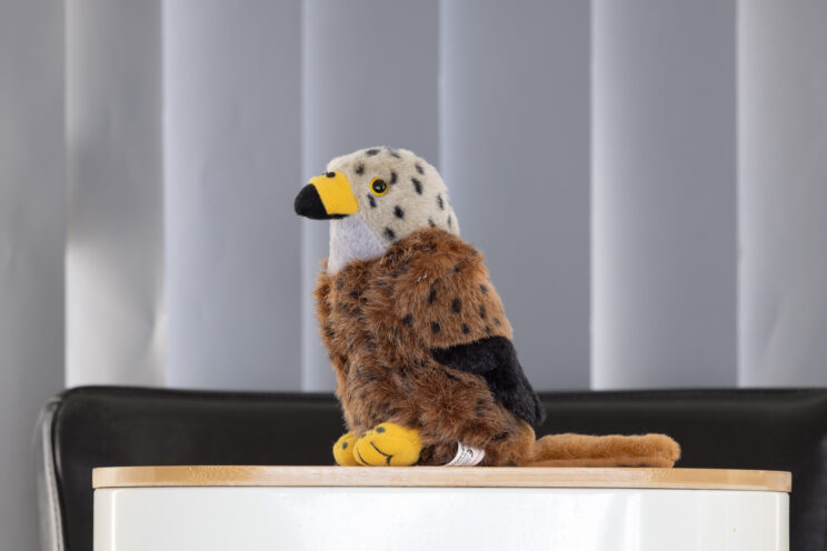 red kite stuffed toy on an undefined background