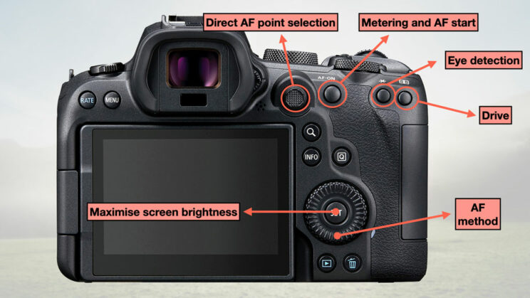illustration of the configuration with the buttons at the rear of the camera