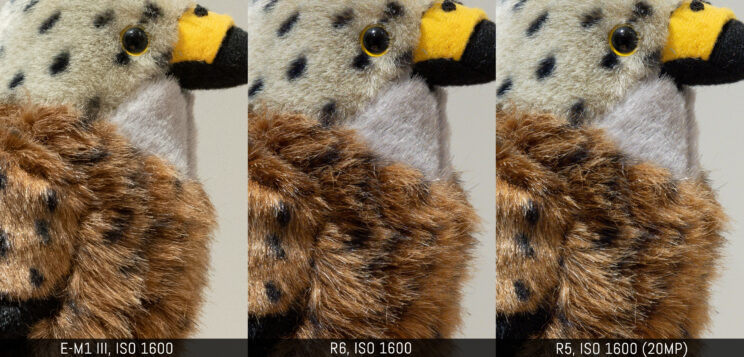 three way comparison with the three cameras at ISO 1600 (R5 downscaled to 20MP)