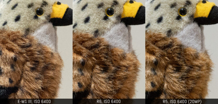 three way comparison with the three cameras at ISO 6400 (R5 downscaled to 20MP)