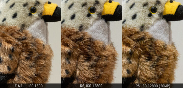 three way comparison with the three cameras, ISO 1600 on the E-M1 III vs ISO 12800 on the two canon (R5 downscaled to 20MP)