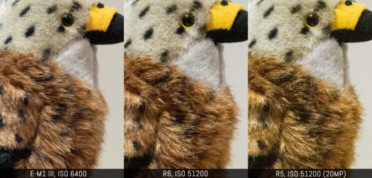 three way comparison with the three cameras, ISO 6400 on the E-M1 III vs ISO 51200 on the two canon (R5 downscaled to 20MP)
