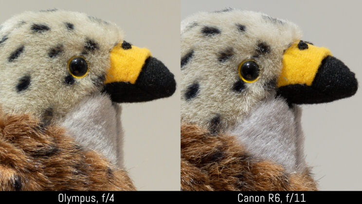 side by side crop of the stuffed toy image, showing sharpness at f4 and f11