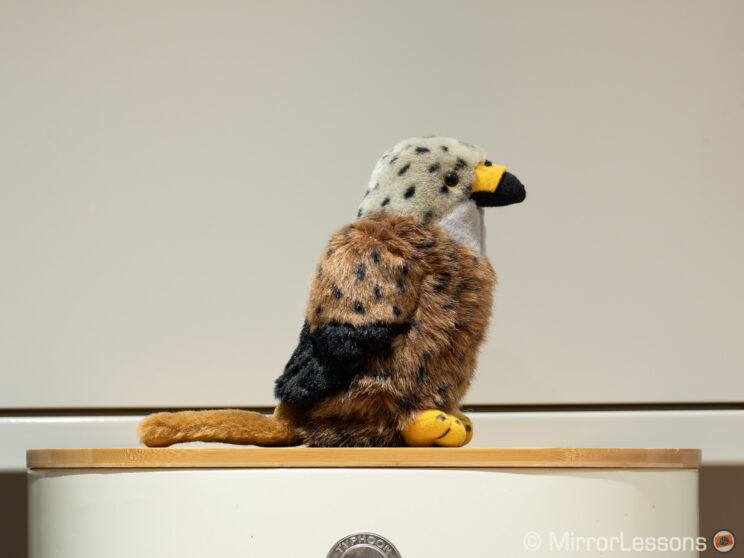 red kite stuffed toy on a white background, which serves as subject for the tests