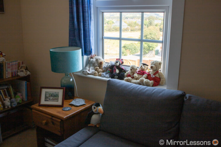 part of a living room with window and garden outside in the sunshine